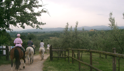 Horseback Riding In Tuscany Equestrian Vacation